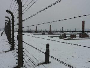 Auschwitz-Birkenau Ruinen der Baracken im Bauabschnitt B3