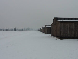 Auschwitz-Birkenau Holzbaracken