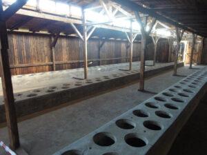 Auschwitz-Birkenau Latrinenbaracke