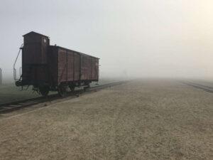 """Auschwitz-Birkenau """"Rampe"""""""