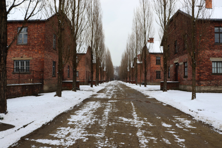 76. Jahrestag der Befreiung des Konzentrations- und Vernichtungslager Auschwitz-Birkenau
